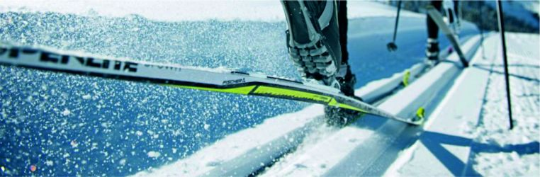 Běžky pro všechny terény, věk i úrovně lyžařů.