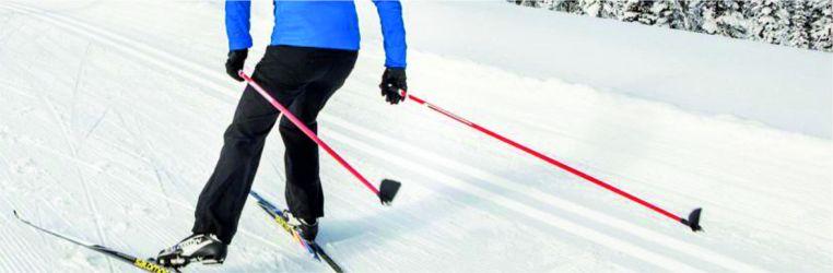 Prodej holí na běžecké lyžování různých délek od malých lyžařů až po dospělé.